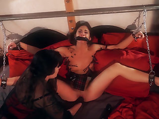 Domme's delight