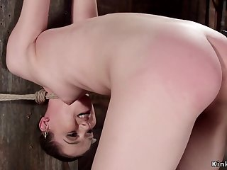 Bitch in extremist hogtie hanged increased by whipped